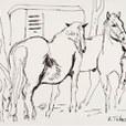 cavalli_con_carrozzone-jpg